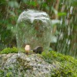 20-3 Regenschutz